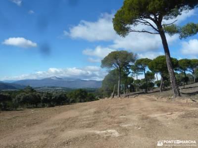 Ruta del Boquerón-Caminar rápido [RETO,Power Walking]parque natural fuentes carrionas y fuente cob